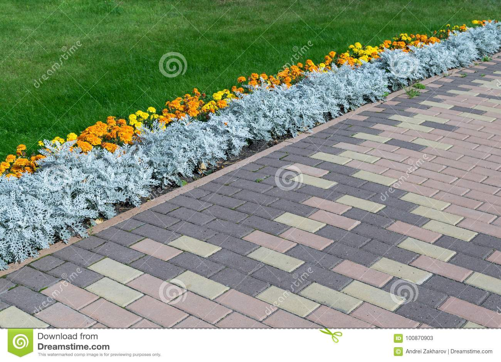 Pavimentación del modelo con forma rectangular y color marrón