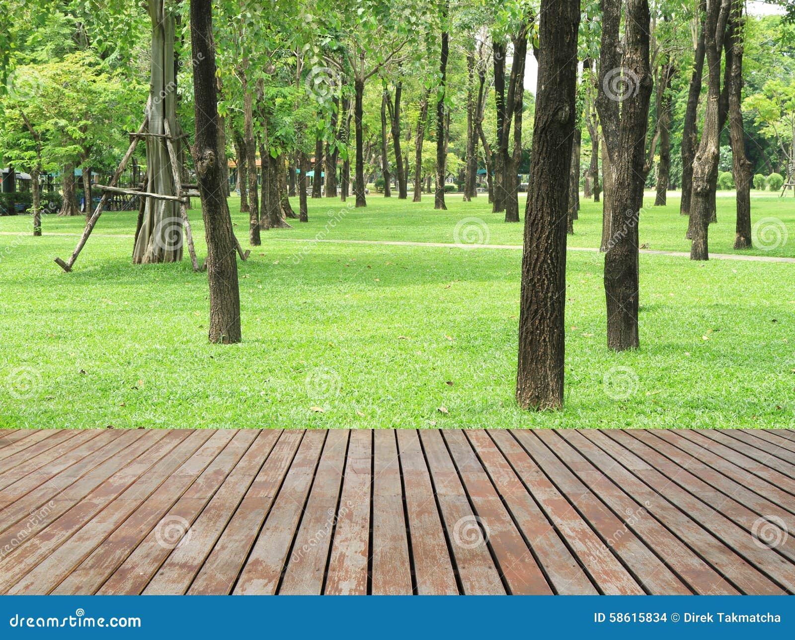 Pavimento Di Legno Delle Plance E Giardino Verde Fotografia Stock ...