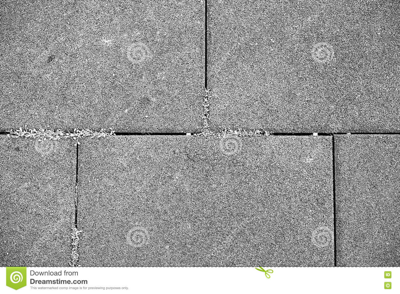 Paving Slabs And Grass Stock Photo Image Of Patio Stone
