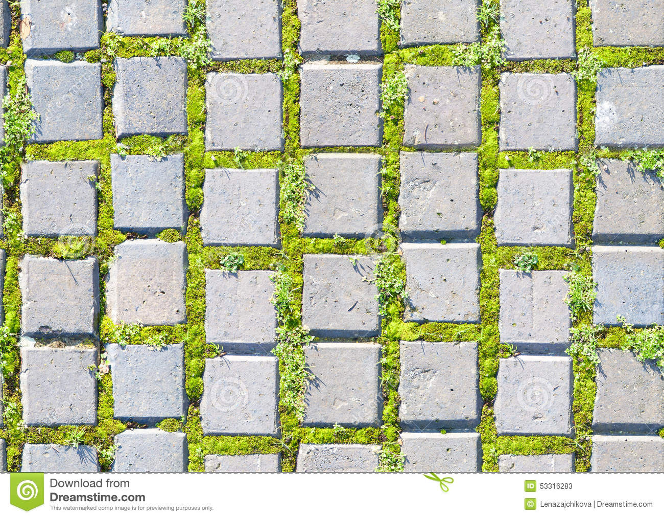 Paving stone style with grass seamless pattern stock image for Green pavers