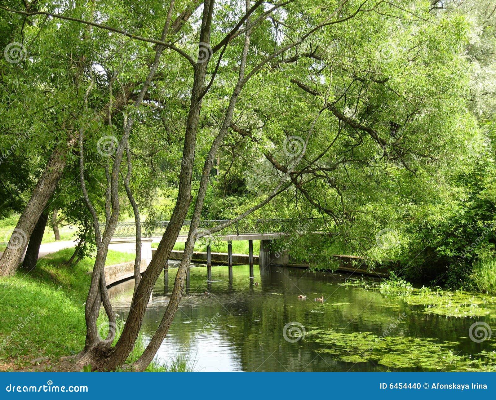 Pavlovsk Rosji park