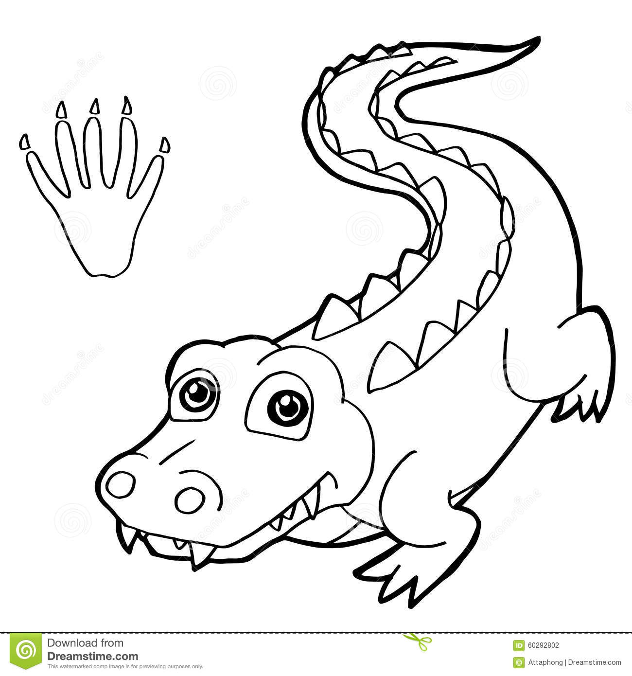 Vector The Crocodile Coloring Pages | www.pixshark.com