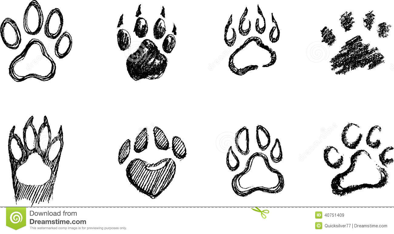 The pictures for --> Dog Paws Drawing