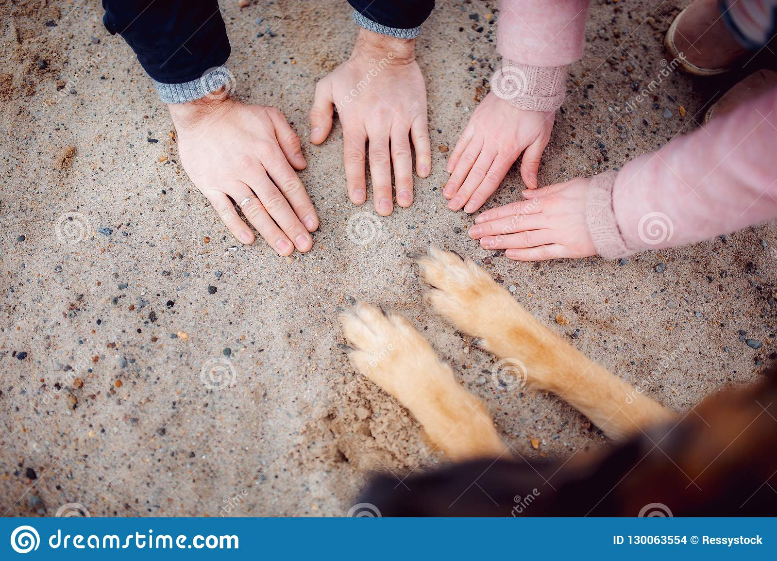 Paws of a dog and hands of people