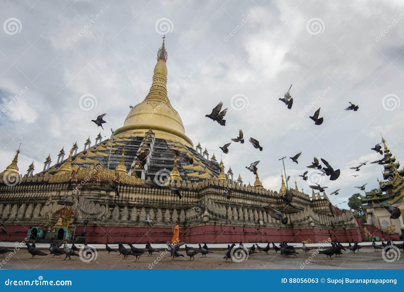 Paya de Mahazedi avec le pigeon la plus grande pagoda dans le bago, myanmar