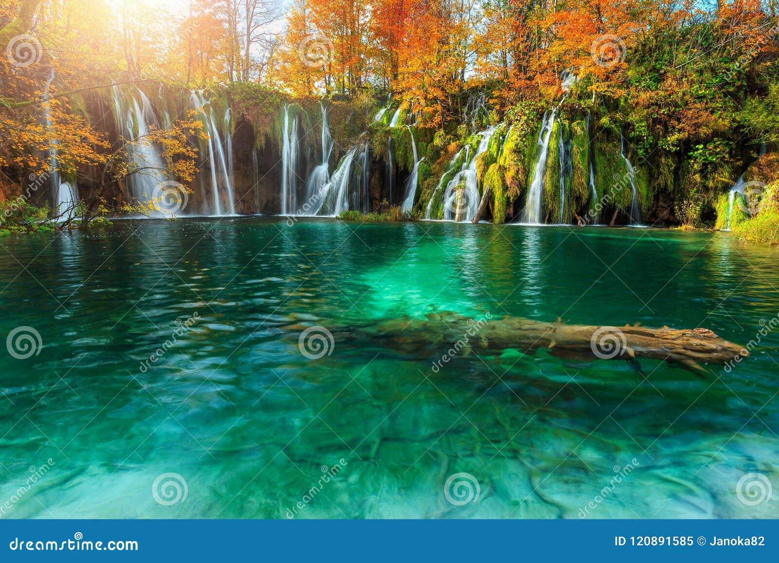 Paysage étonnant d automne avec des cascades en parc national de Plitvice, Croatie