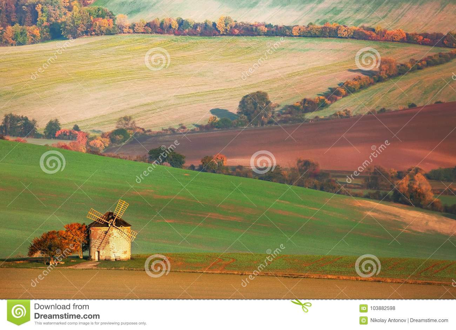 Paysage étonnant des champs moravian avec le vieux moulin à vent en Moravie du sud, République Tchèque
