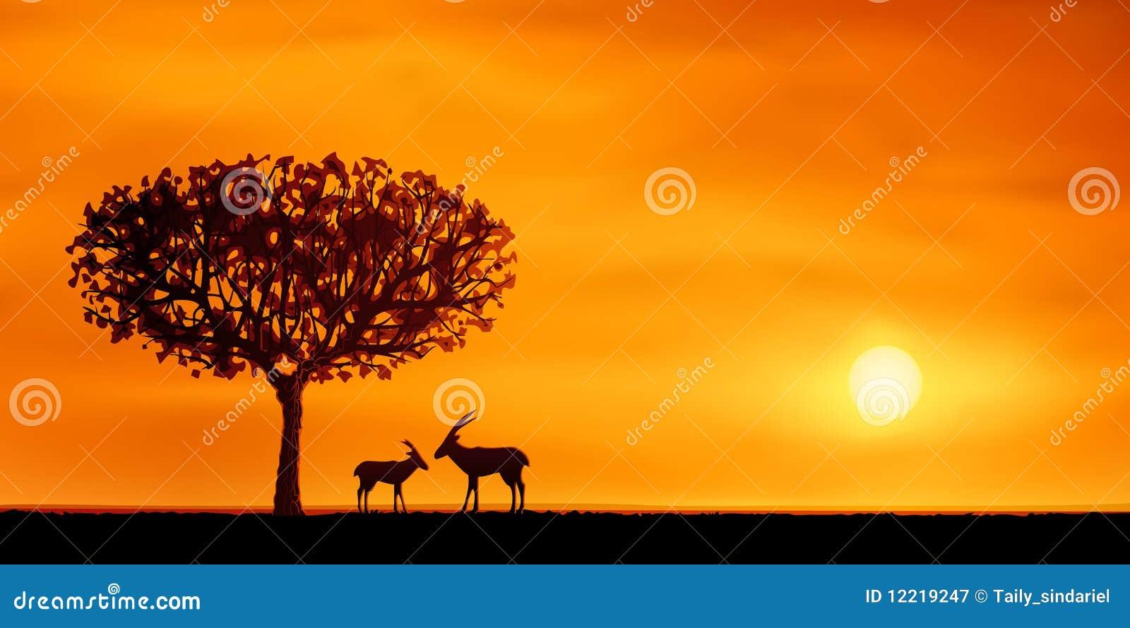 Paysage africain de la savane photographie stock libre de droits image 12219247 - Arbre africain en 7 lettres ...