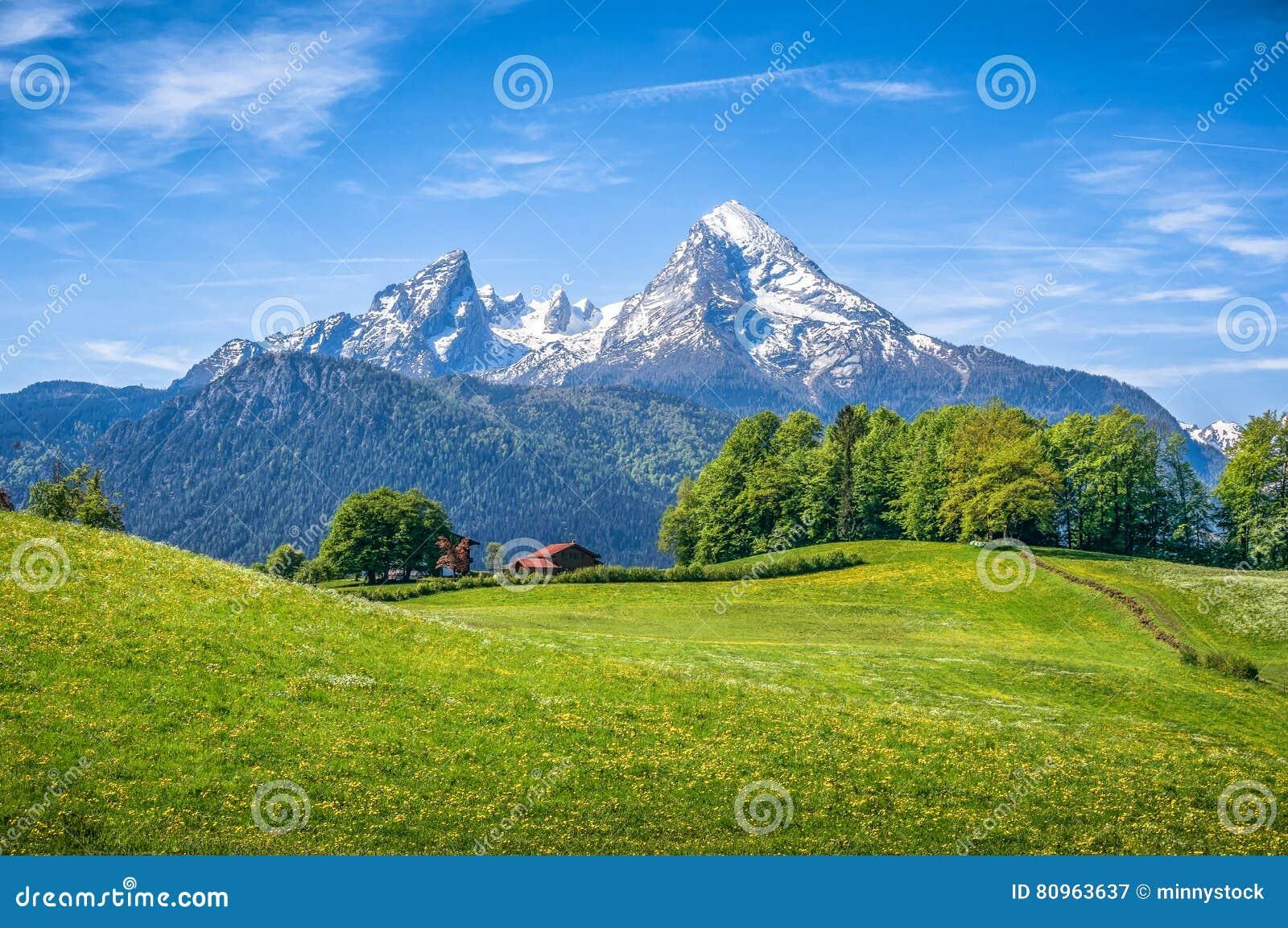 Paysage alpin idyllique avec les prés verts, les fermes et les dessus couronnés de neige de montagne