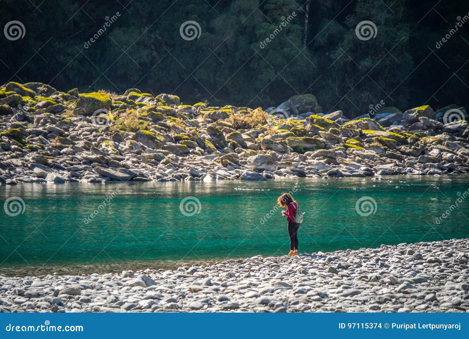 Paysage autour d hurler Billy Falls Track, situé dans le parc national aspirant de Mt, le Nouvelle-Zélande