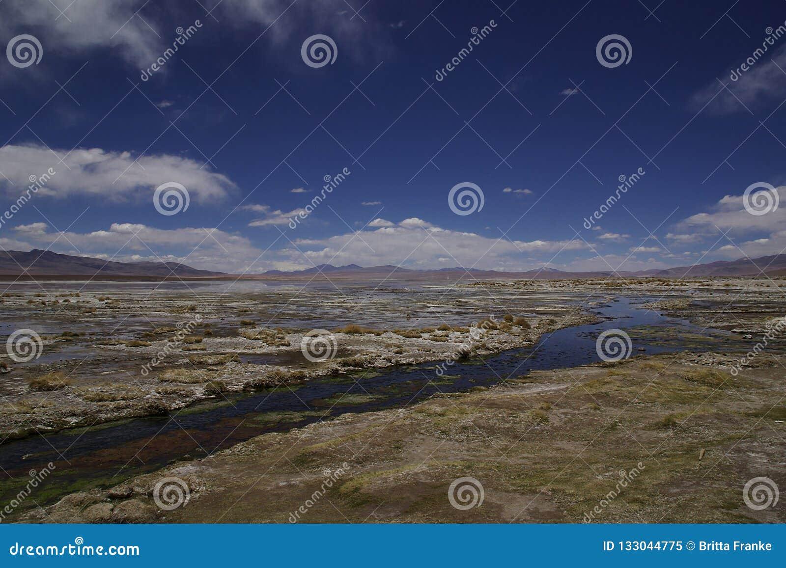 Paysage avec la rivière et le lac dans l altiplano en Bolivie