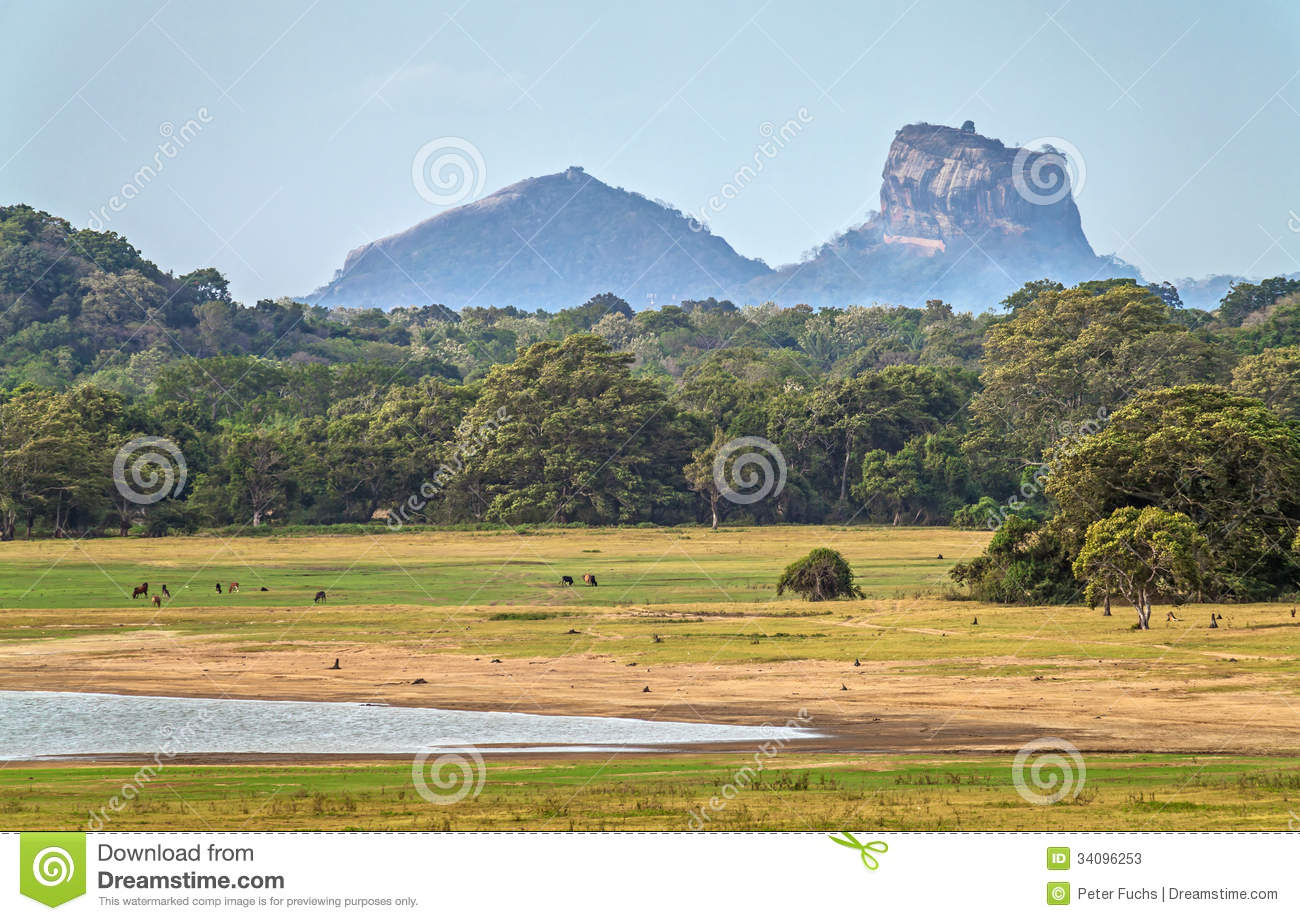 paysage avec la roche de sigiriya photos stock image 34096253. Black Bedroom Furniture Sets. Home Design Ideas