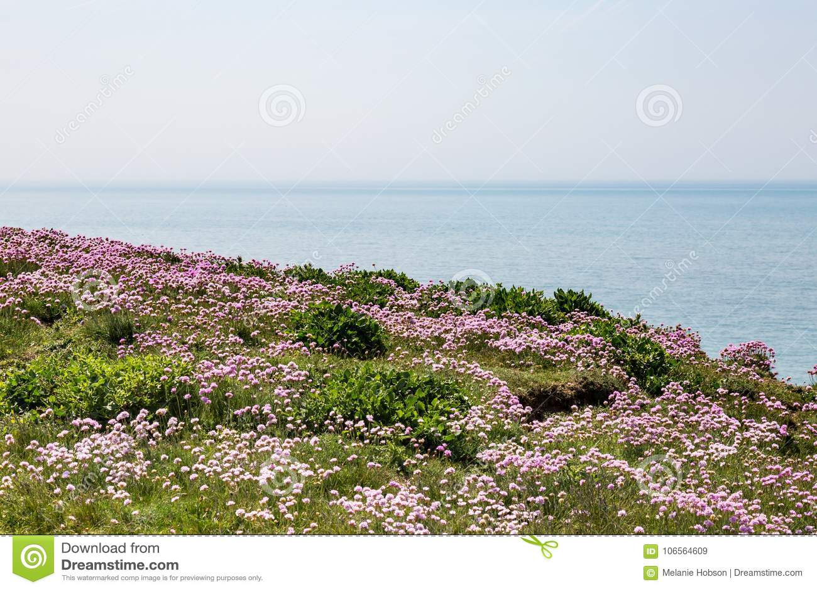 Paysage côtier, le Sussex
