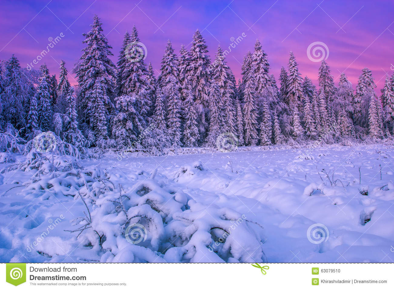 Download Paysage carpathien d'hiver photo stock. Image du aventure - 63079510