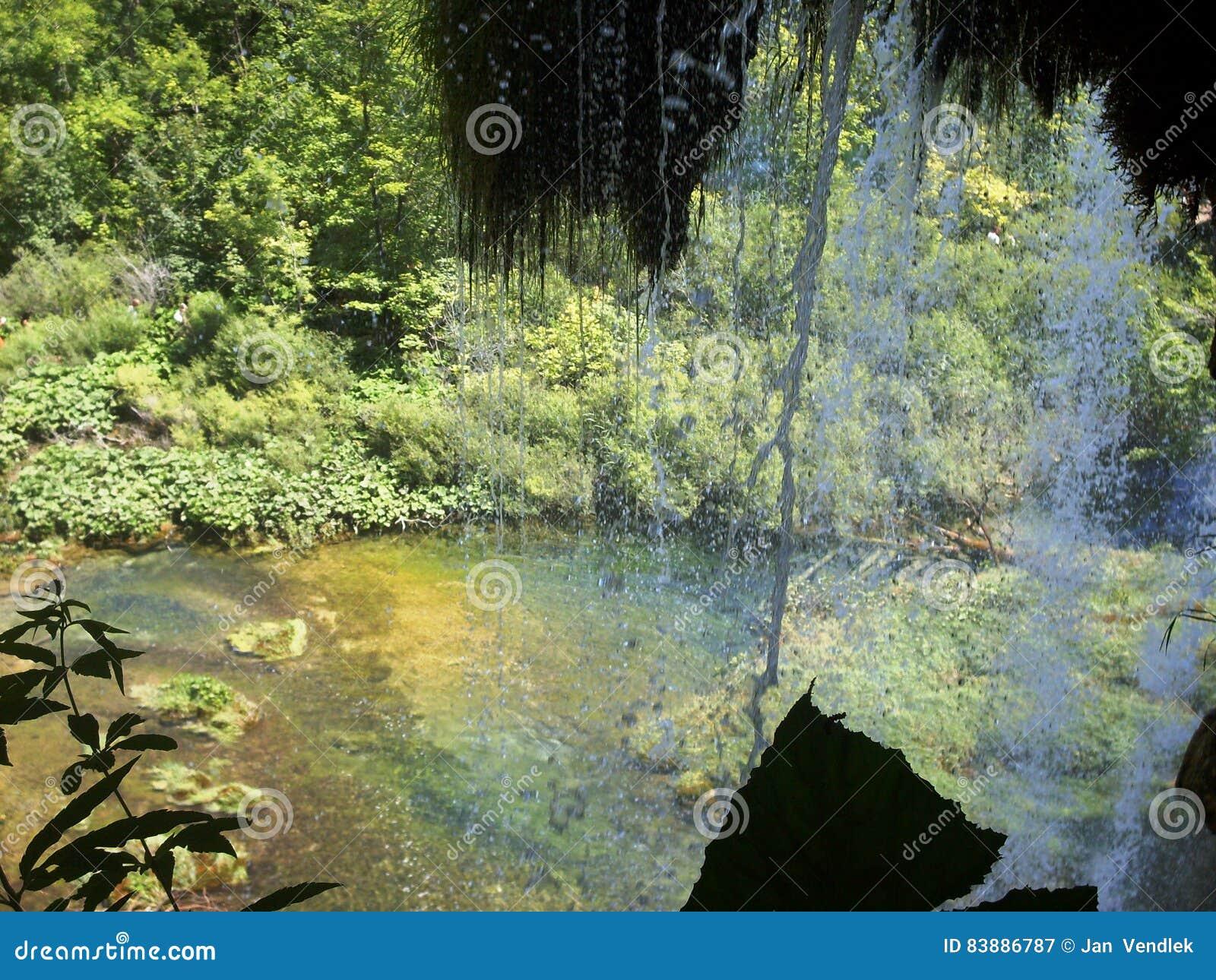 Paysage coloré et vibrant de rivage de lac Paysage tranquille utile comme fond Abaissez le canyon de lacs Lacs Plitvice nationaux