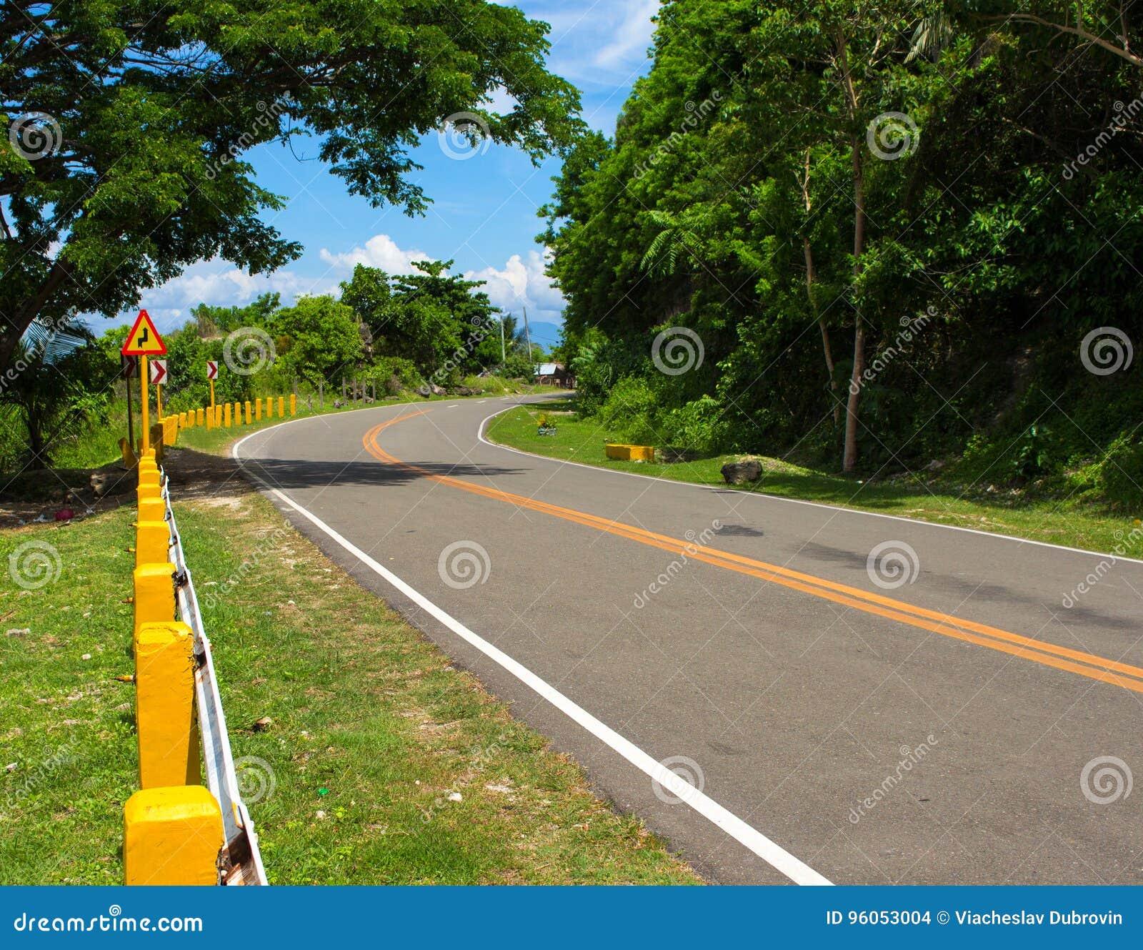 Paysage d été avec la route et promenade en voiture verte de forêt dans le jour ensoleillé