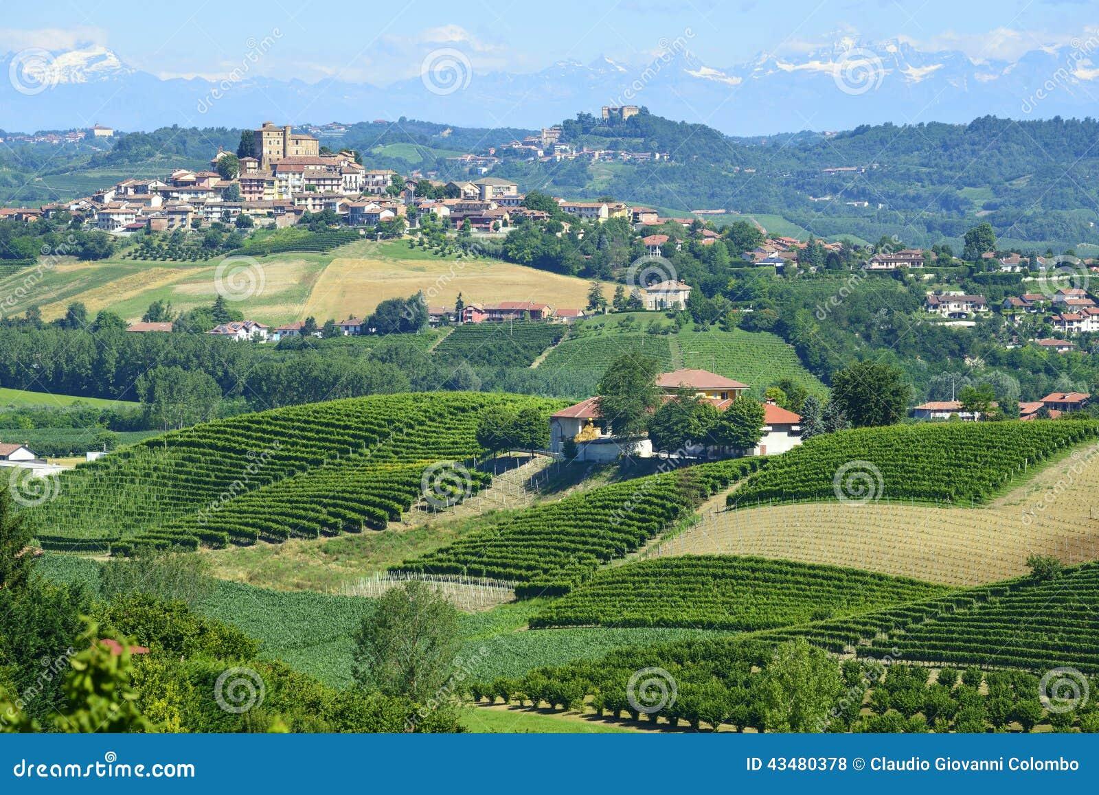 Paysage d 39 t dans langhe italie photo stock image du for Dans italien