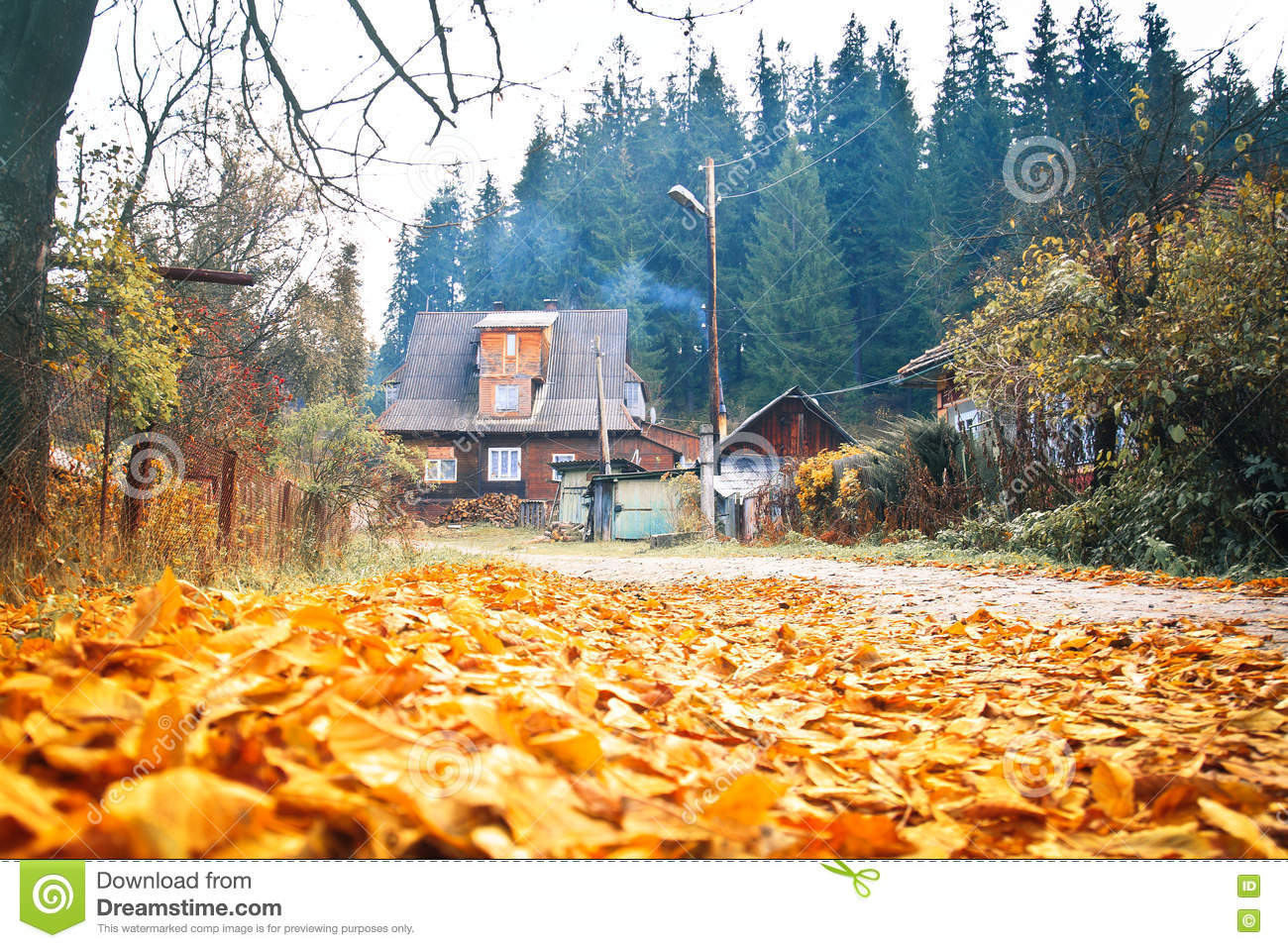 paysage d 39 automne avec une vieille maison en bois photo stock image du tranquillit orange. Black Bedroom Furniture Sets. Home Design Ideas