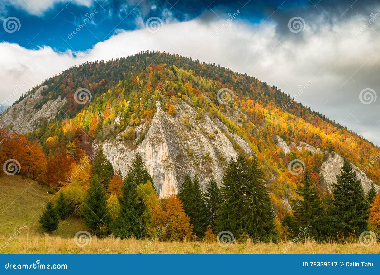 Paysage d automne dans la région éloignée de montagne en Transylvanie
