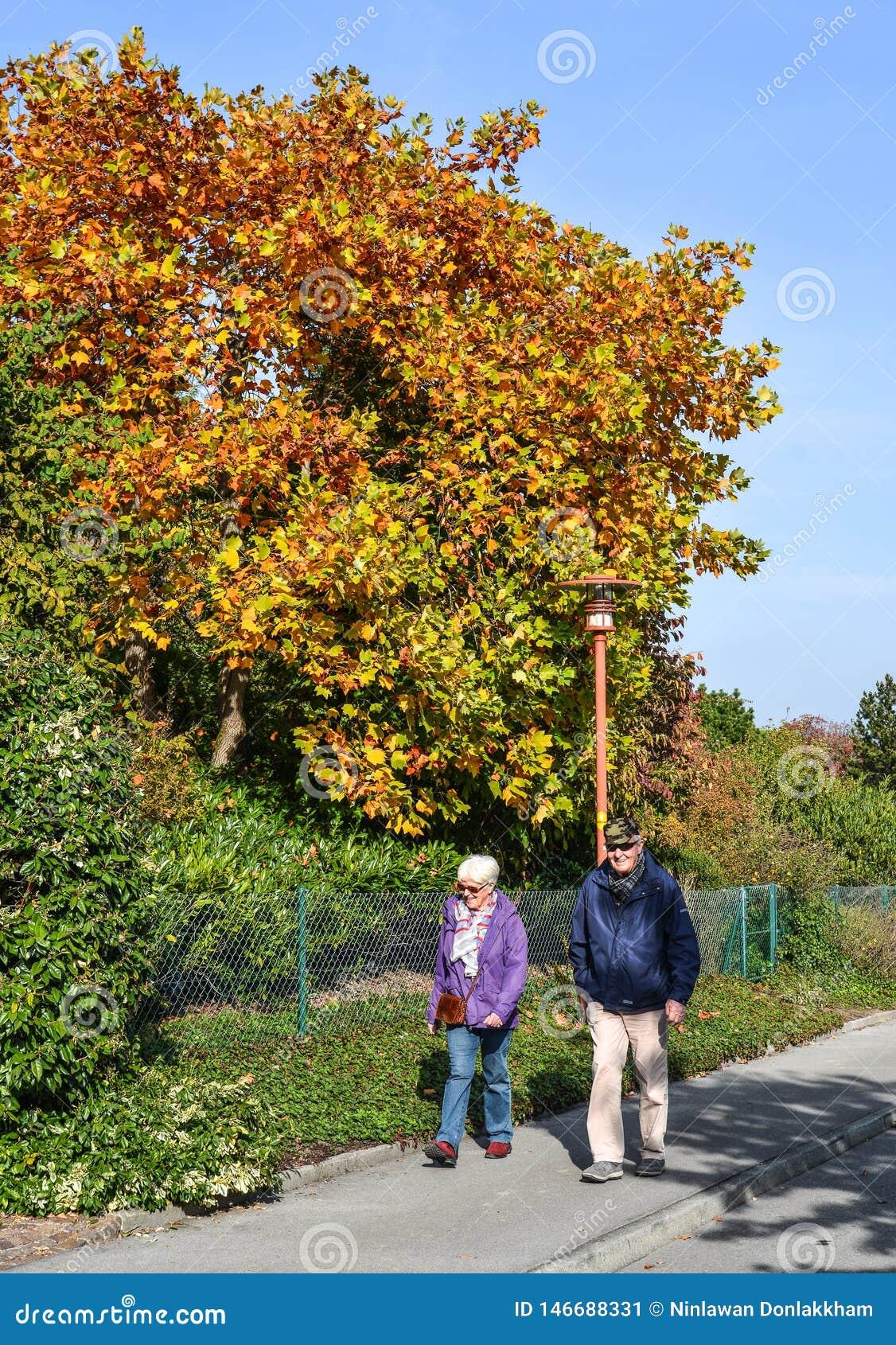 Paysage d automne de Lucerne, Suisse