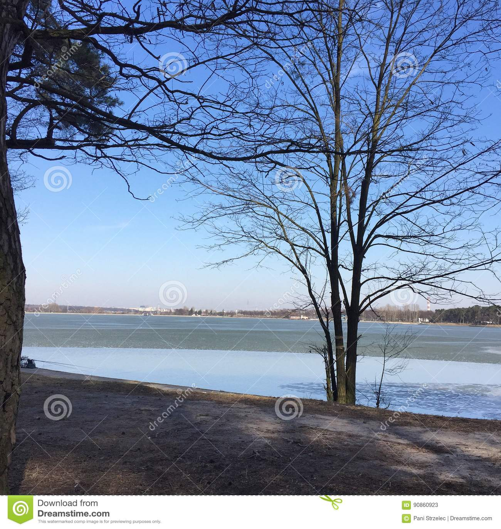 Paysage d hiver avec un lac