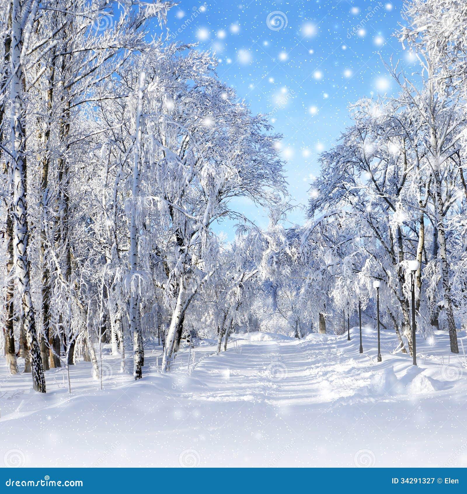paysage d 39 hiver temp te de neige photographie stock libre de droits image 34291327. Black Bedroom Furniture Sets. Home Design Ideas