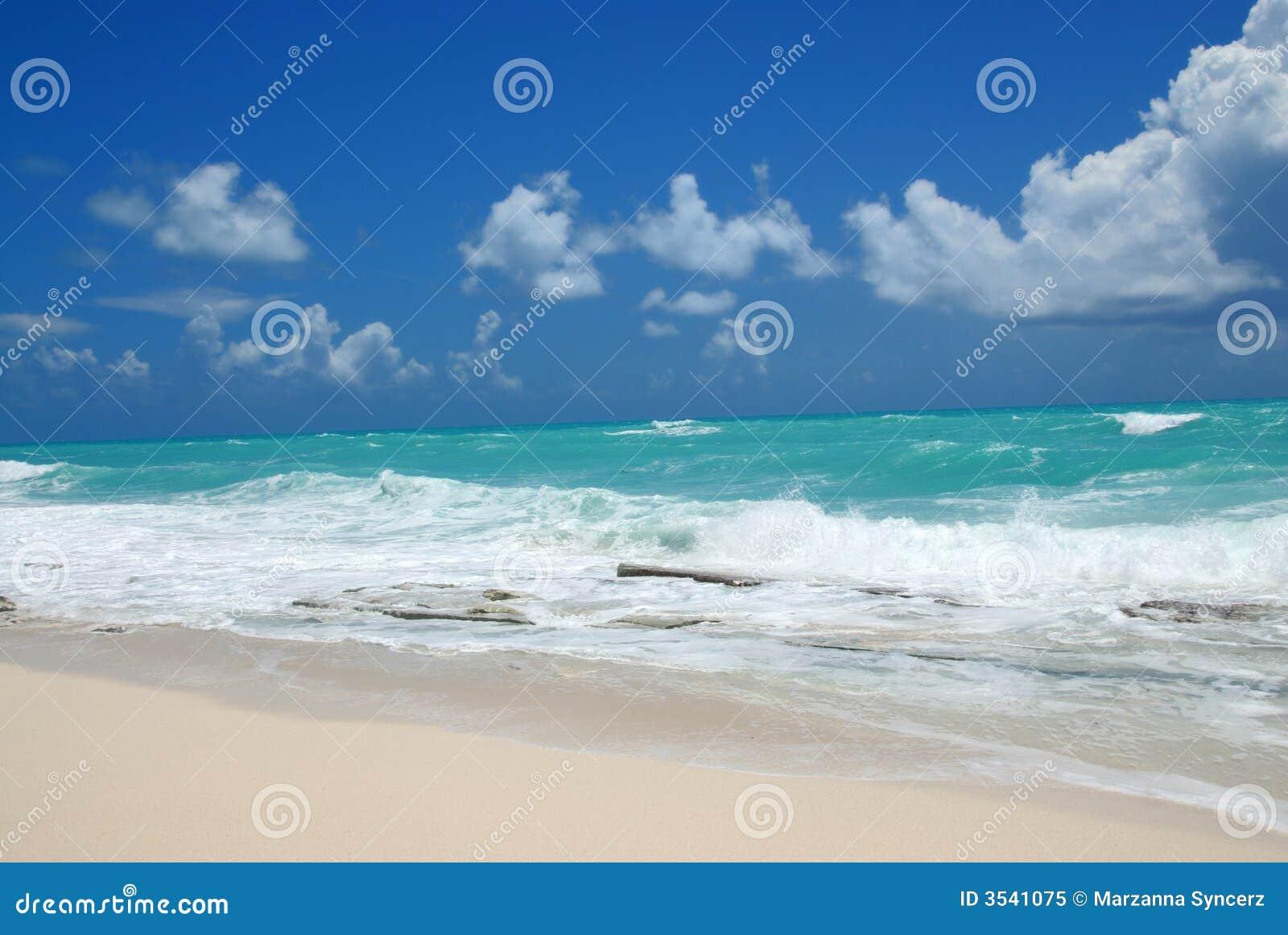 Paysage d ondes et de plage d océan