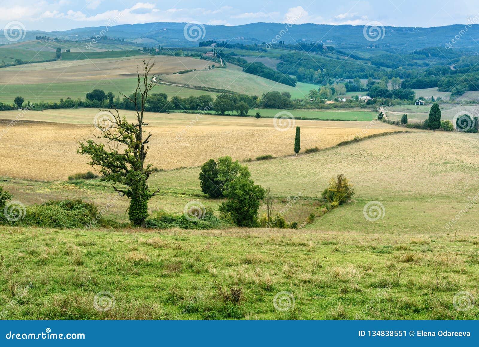Paysage dans la région de chianti dans la province de Sienne tuscany l Italie