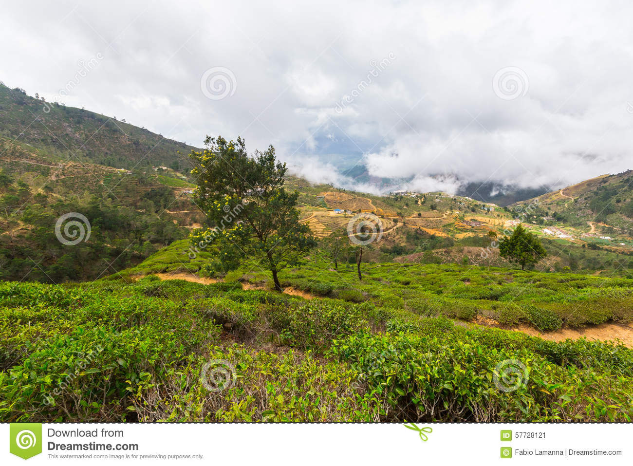paysage dans le pays de colline de sri lanka photo stock image 57728121. Black Bedroom Furniture Sets. Home Design Ideas