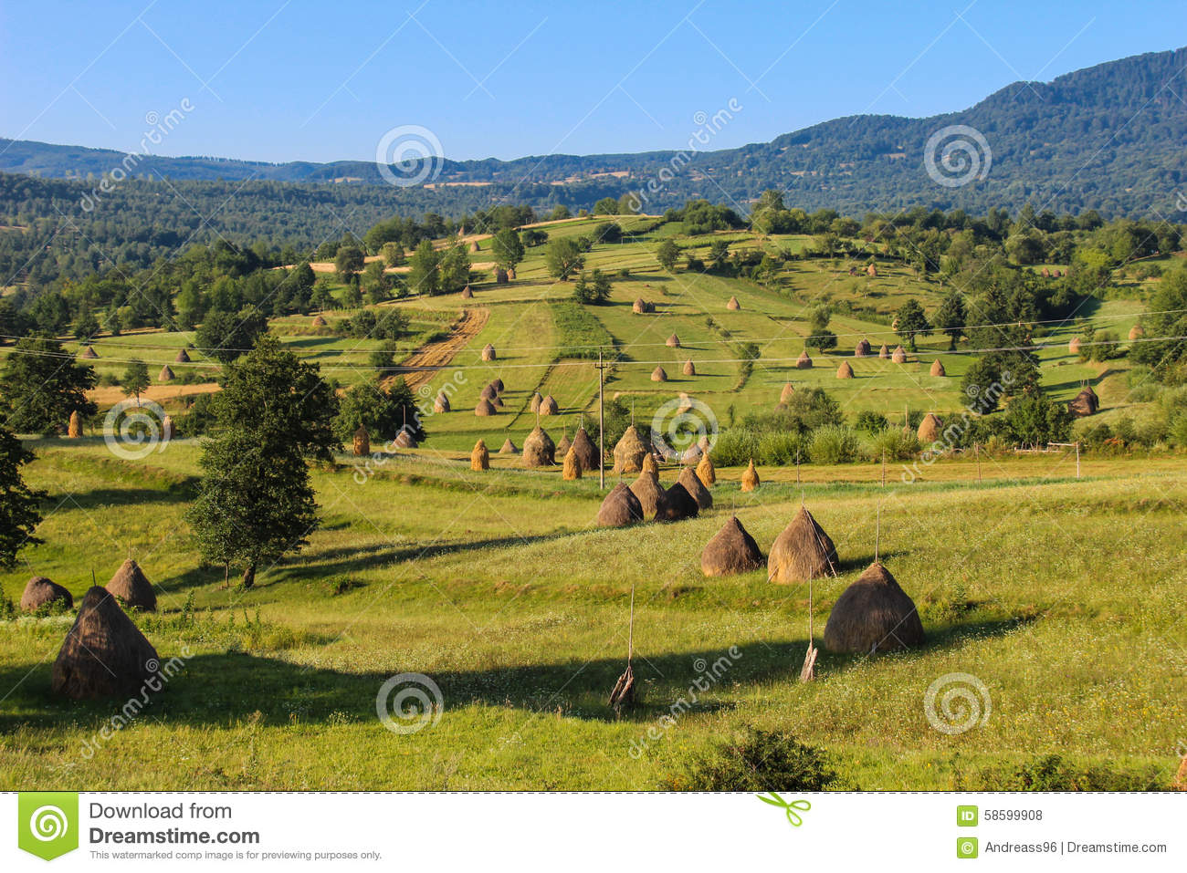 Kosice From Air Slovakia 2 likewise Khibiny Mountains besides Royalty Free Stock Photos Danke Image17285818 additionally Musee D Orsay Paris France also Greenthumb 11362. on nature in romania