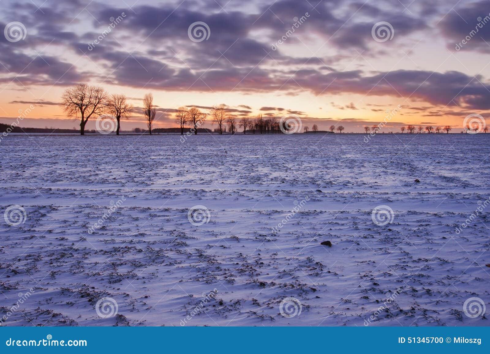 Paysage de champ d hiver au coucher du soleil
