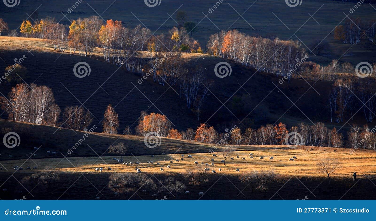 Paysage de Chine du Nord