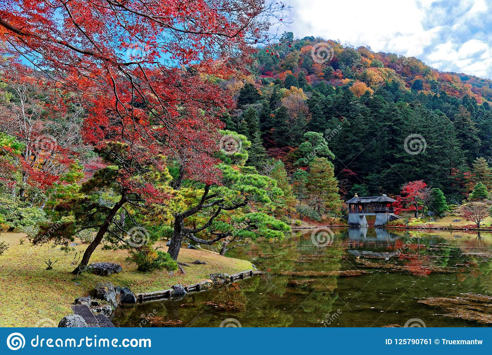 Paysage de chute d un beau jardin japonais en parc royal de villa impériale de Shugakuin