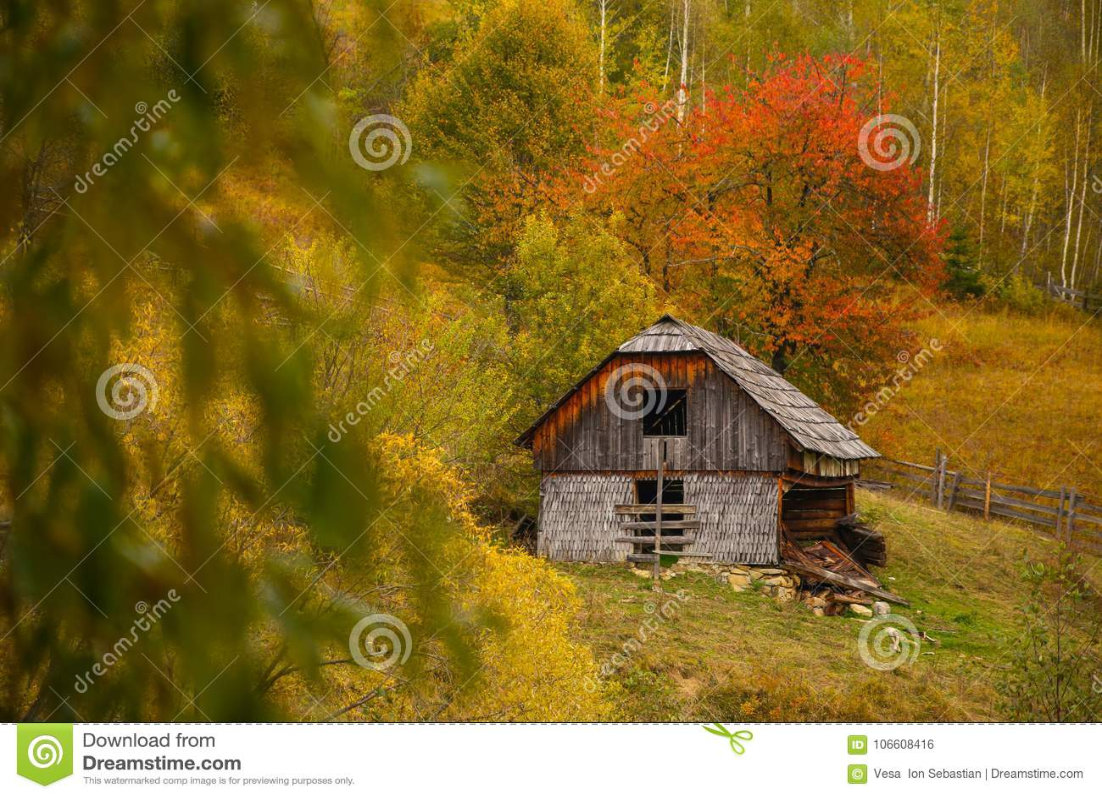 Paysage de paysage d automne avec la forêt colorée, les barrières en bois et la grange abandonnée de foin dans Prisaca Dornei
