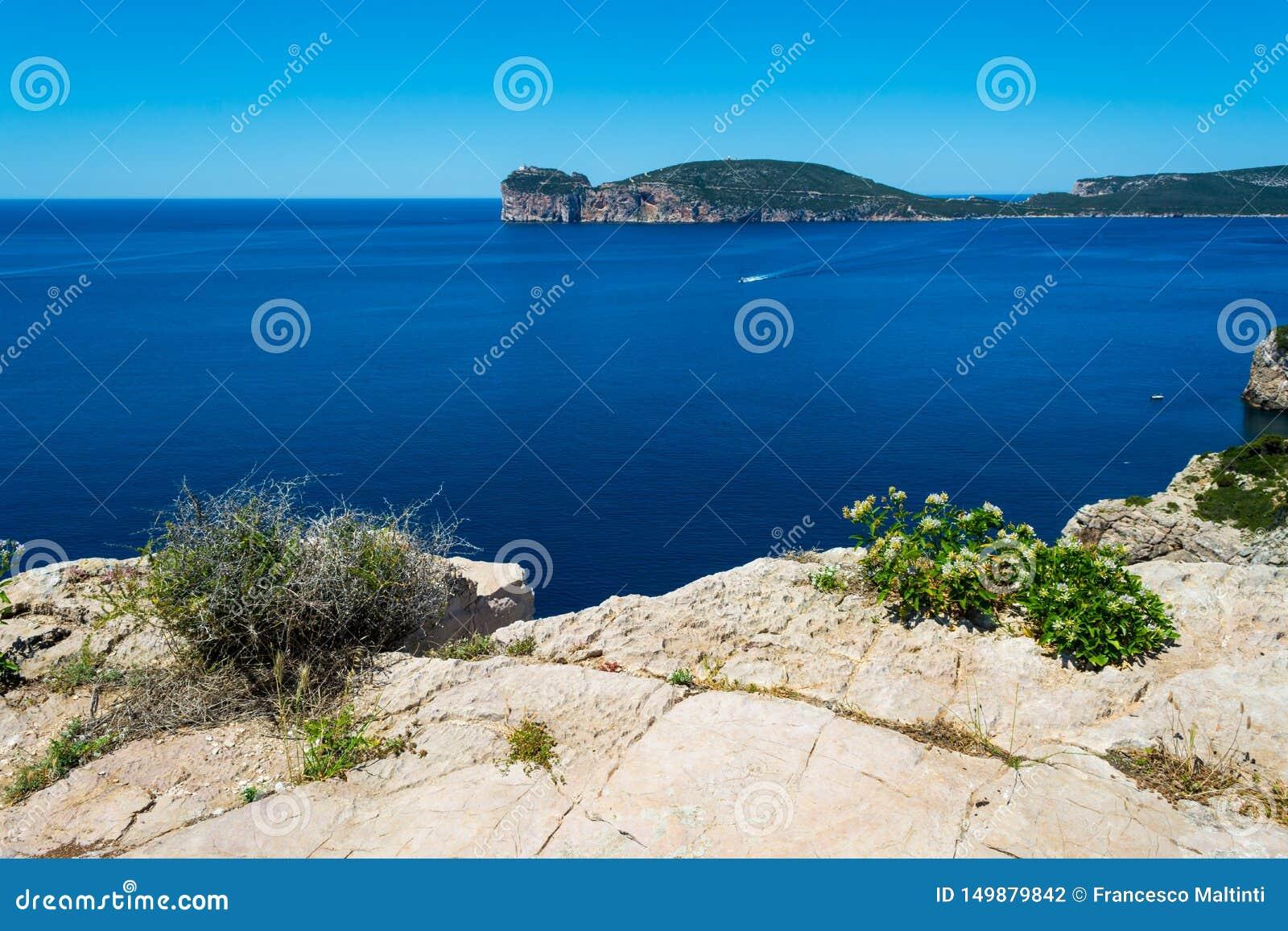 Paysage de la côte du capo Caccia, en Sardaigne