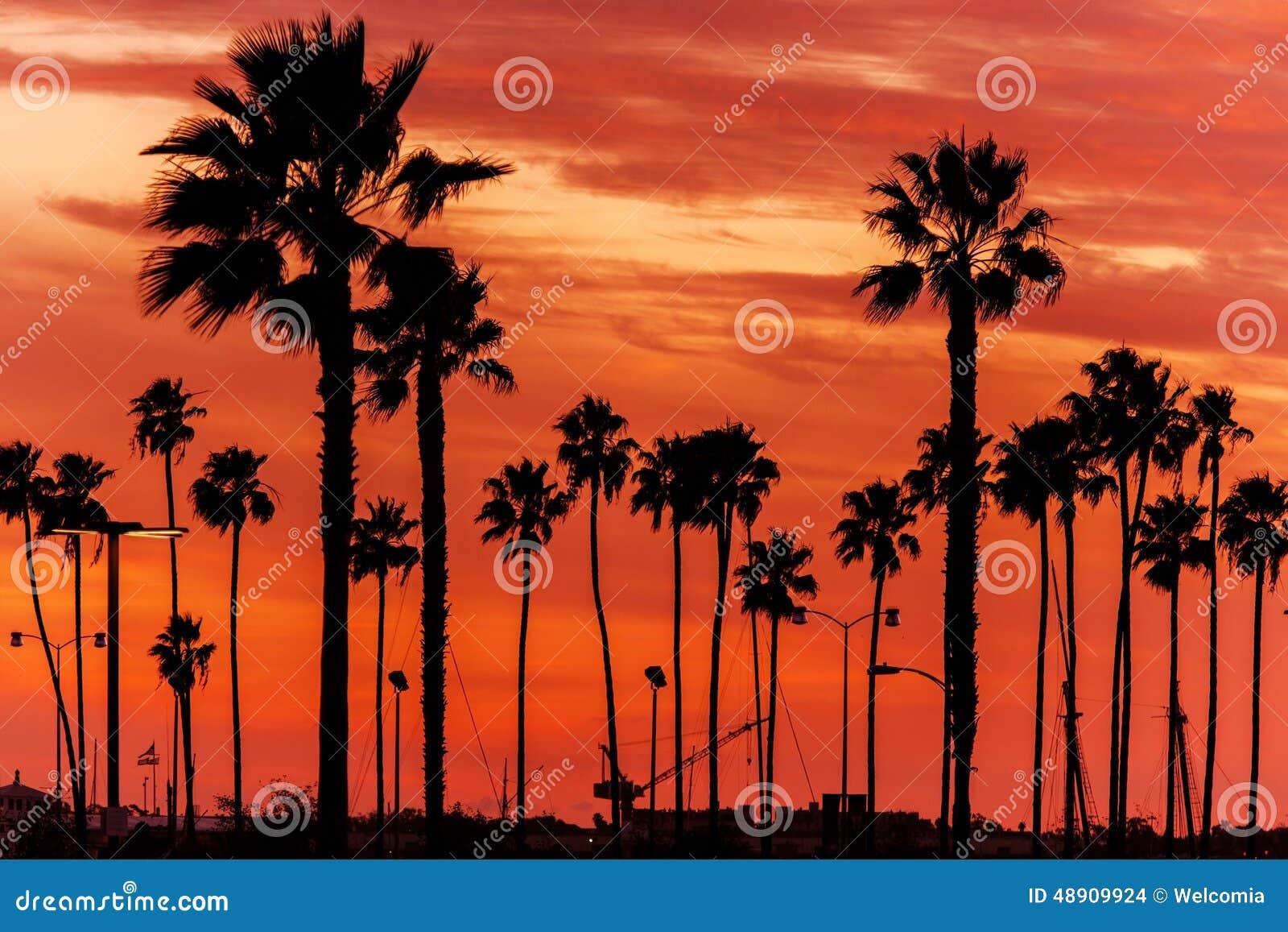 Paysage de la Californie Sanset