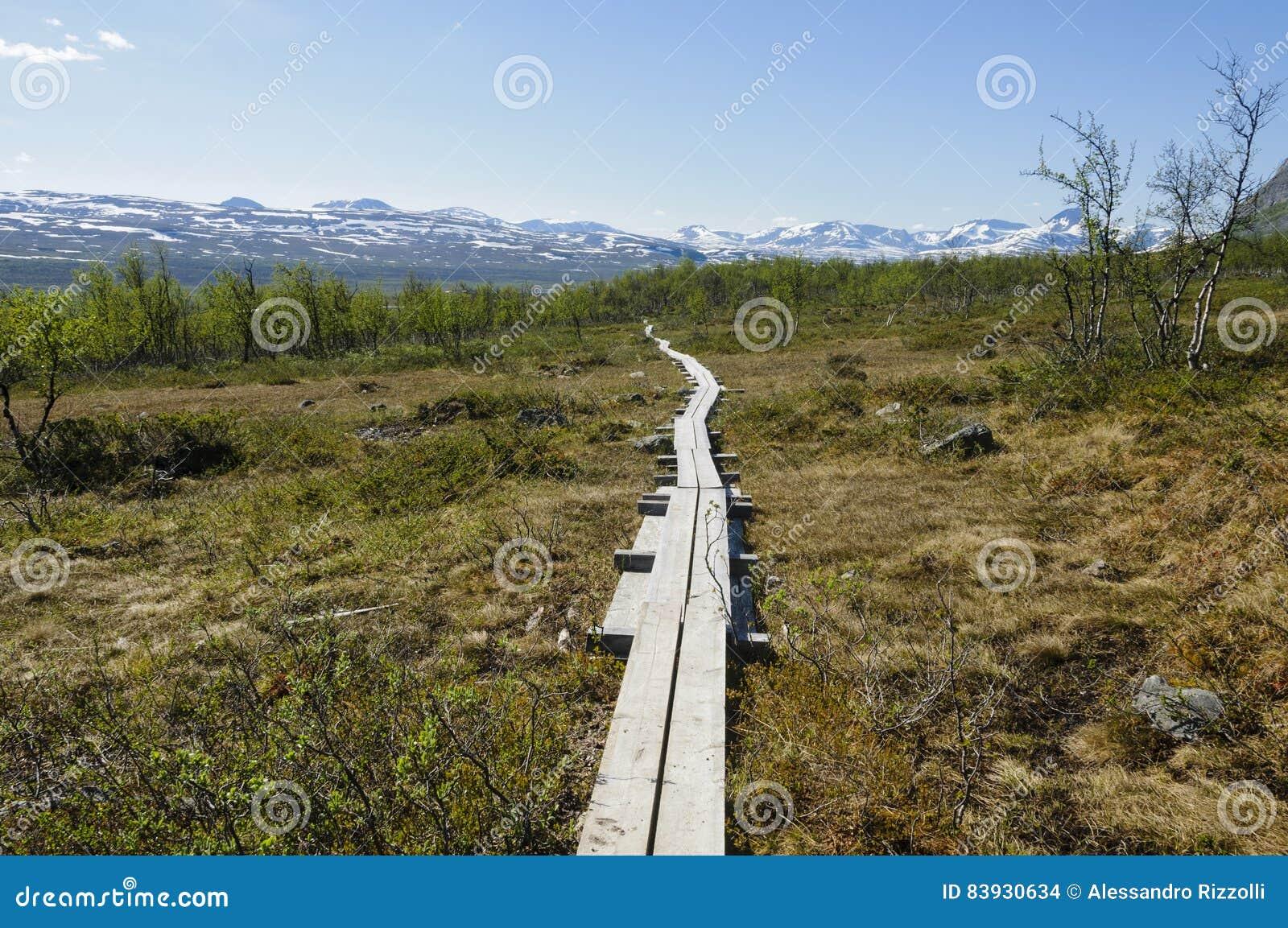 Paysage de la Laponie et chemin de hausse