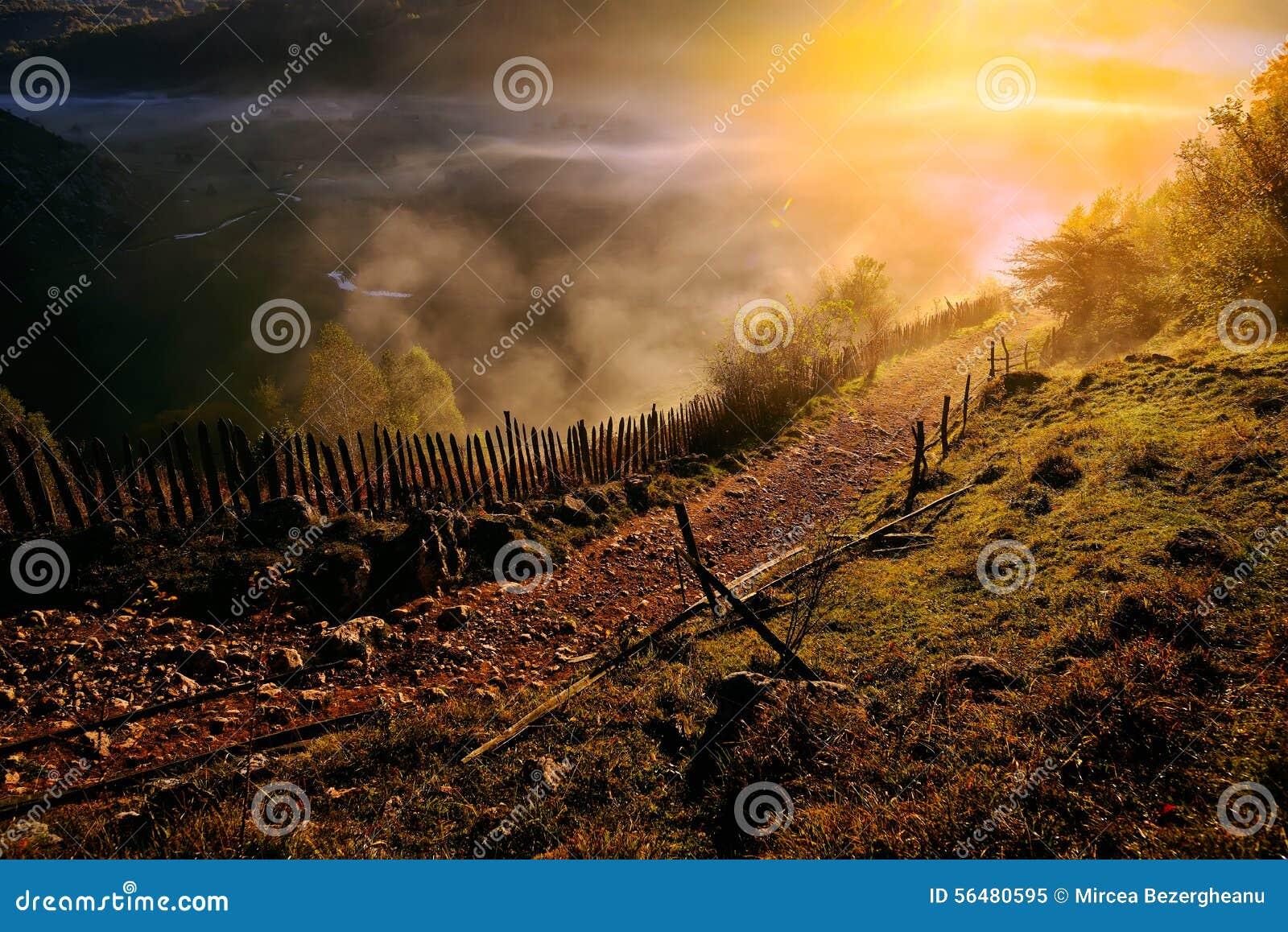 Paysage de montagne avec le brouillard de matin d automne au lever de soleil