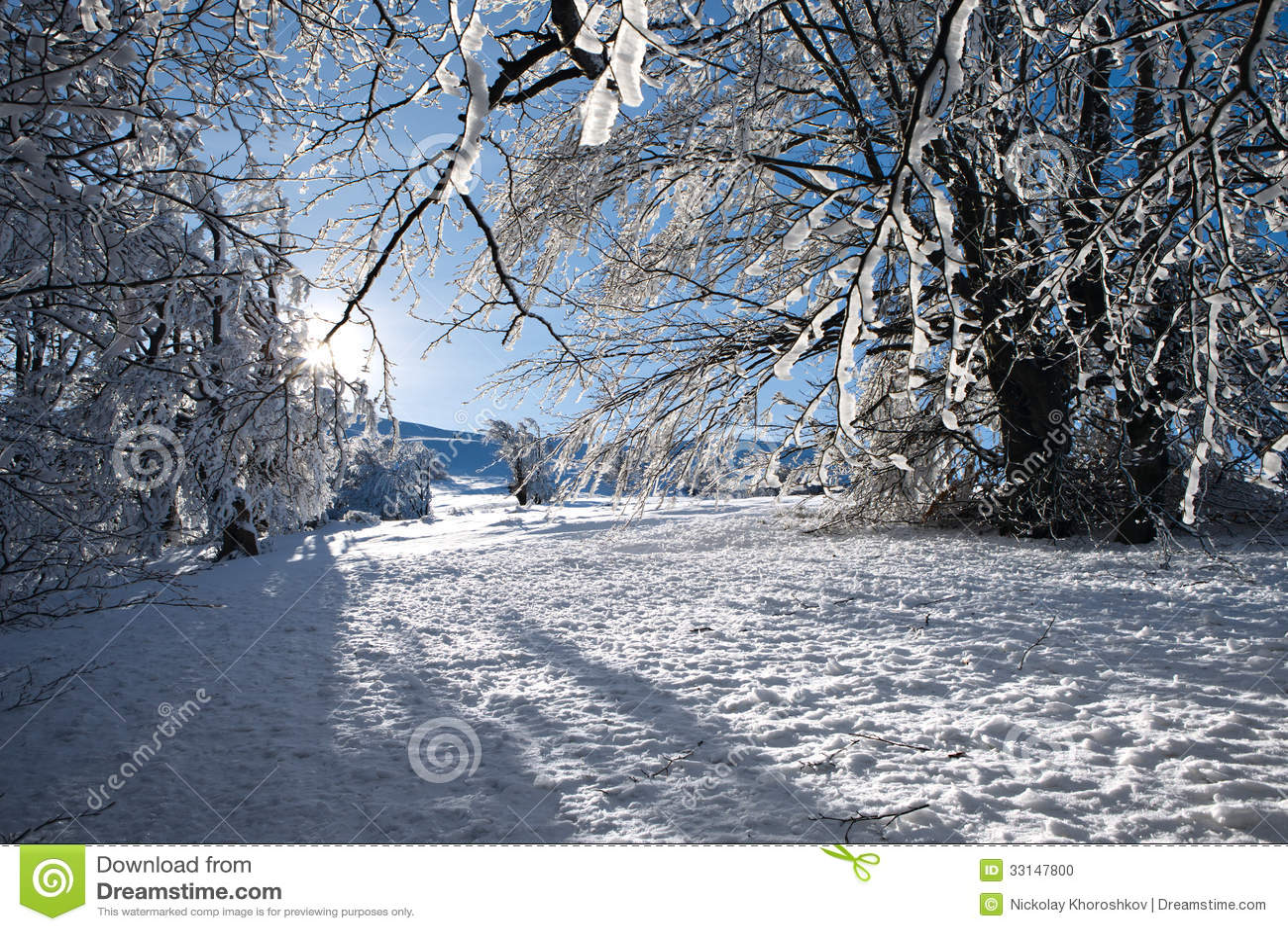 paysage de montagne d 39 hiver avec des sapins sur la colline photo stock image 33147800. Black Bedroom Furniture Sets. Home Design Ideas