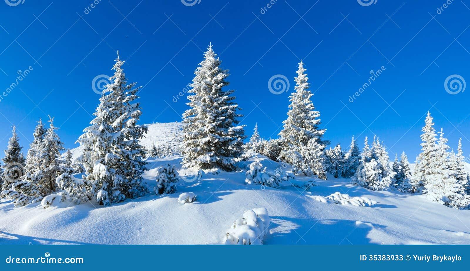 Paysage de montagne d hiver de matin (carpathien, Ukraine).