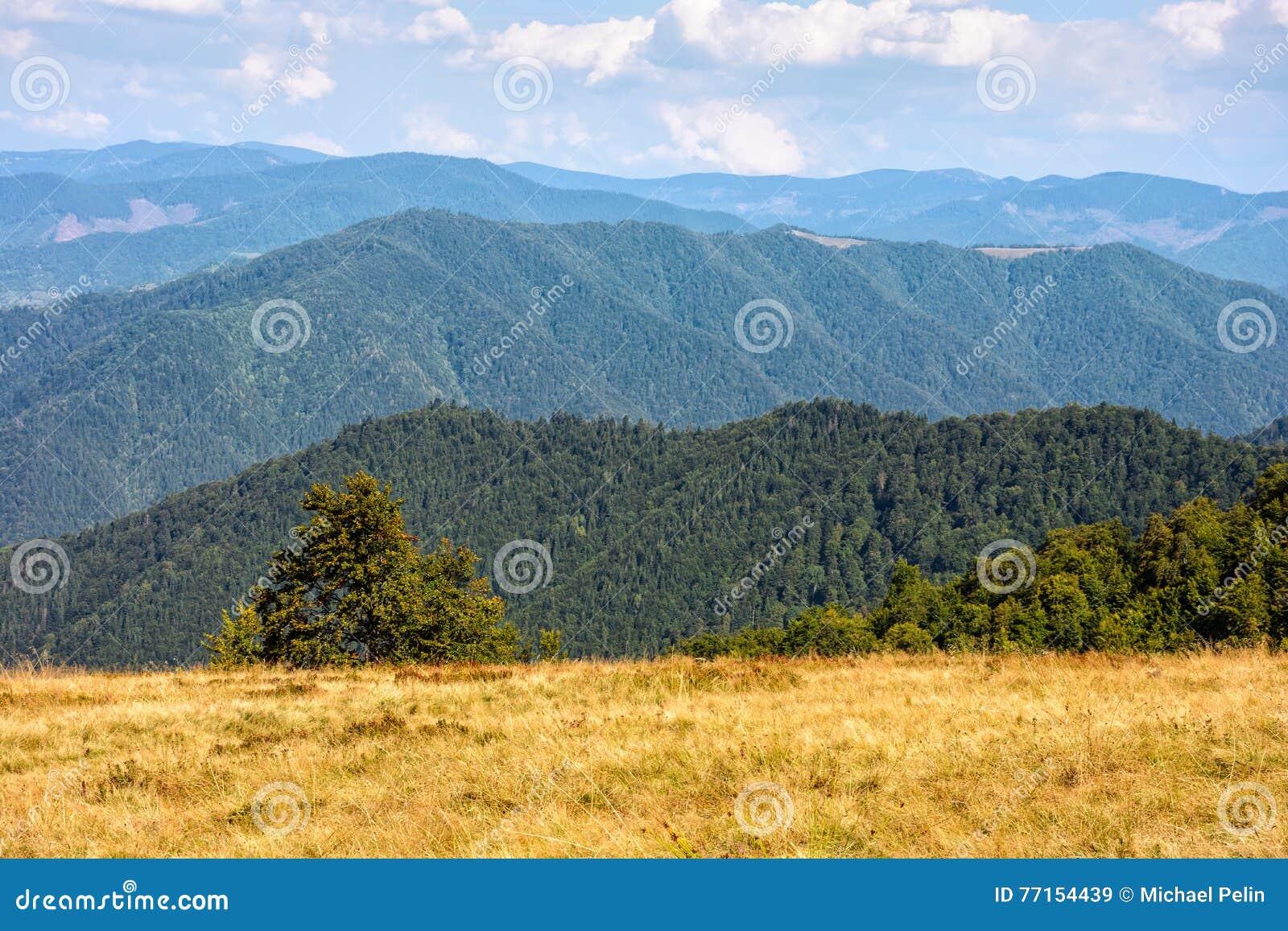 Paysage de montagne de fin d été