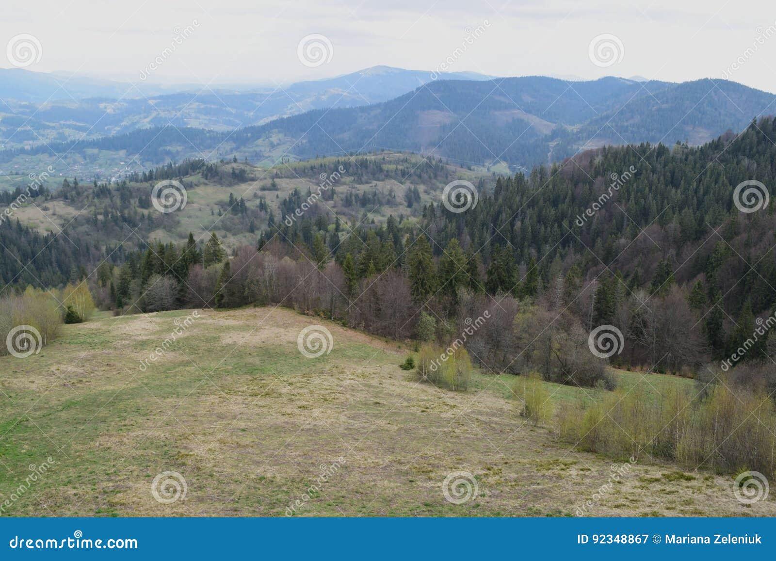 Paysage de montagne de ressort,