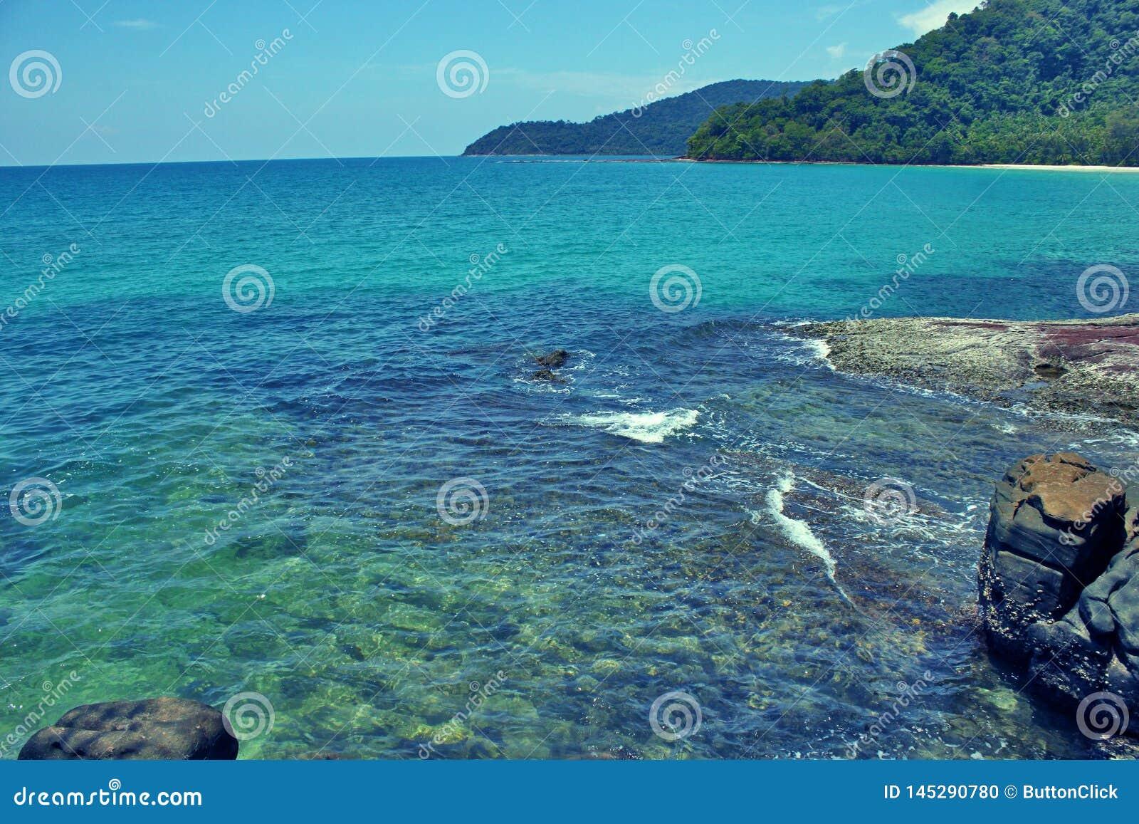 Paysage de montagne de rivage de Coral Clear Sea Tropical Wild