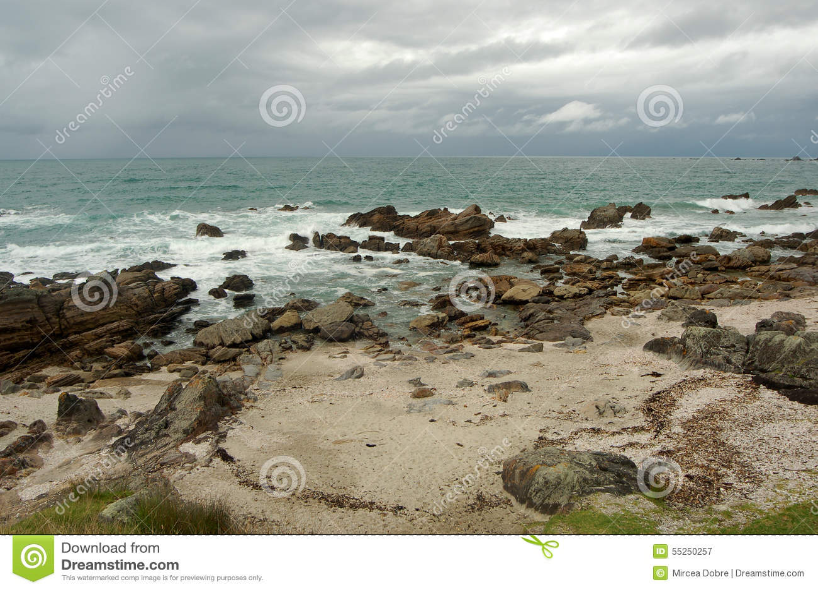 paysage de plage ville de tauranga le du nord nouvelle. Black Bedroom Furniture Sets. Home Design Ideas