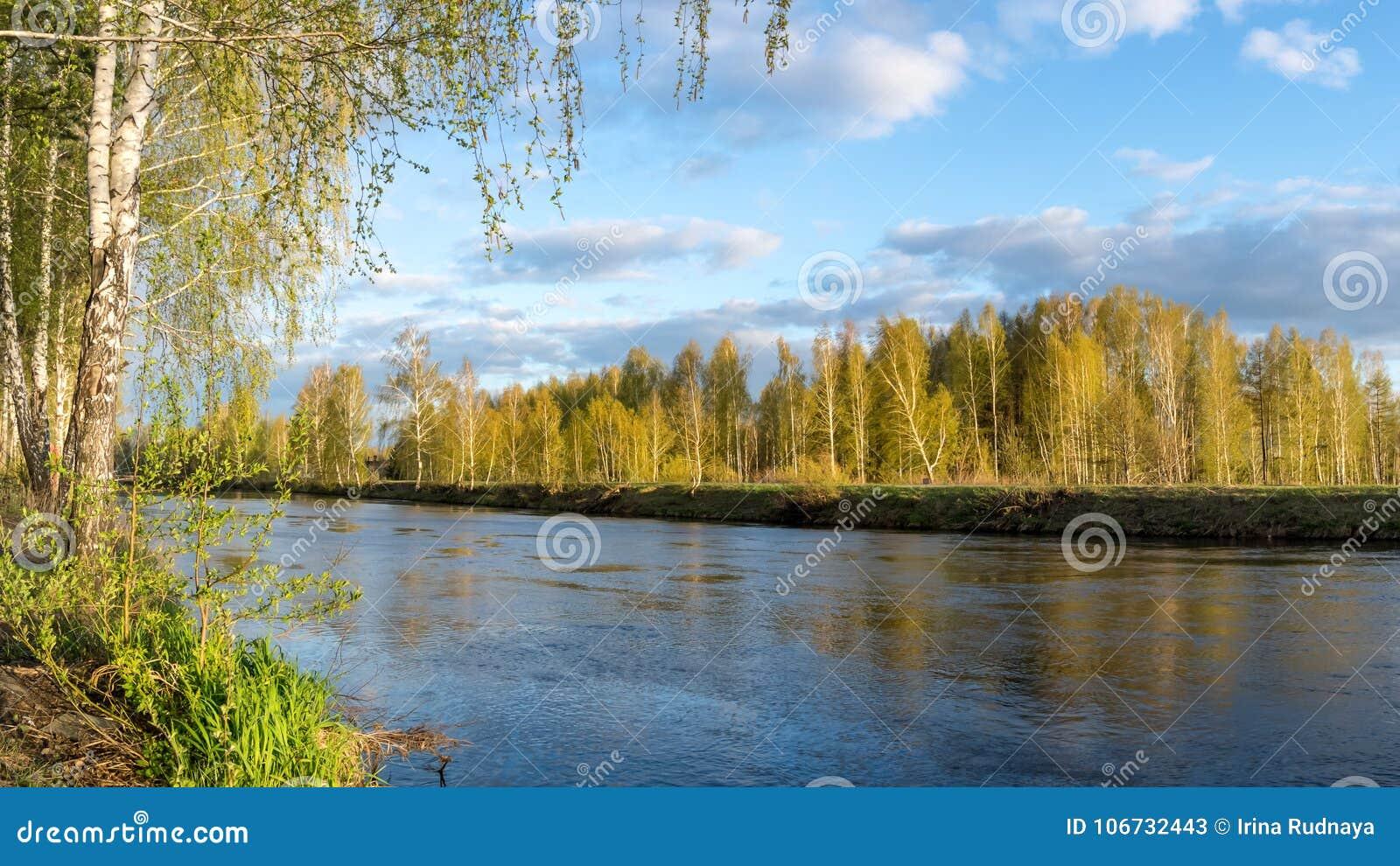 Paysage de ressort à la rivière d Ural, Russie, Ural