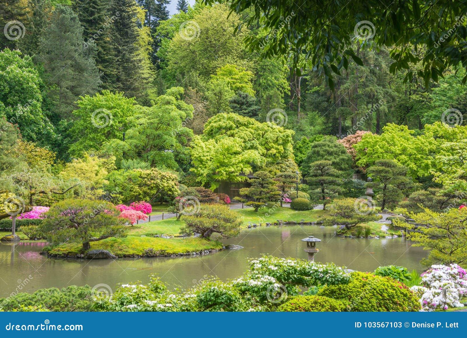 Paysage De Ressort De Jardin Japonais Avec L\'étang, La ...
