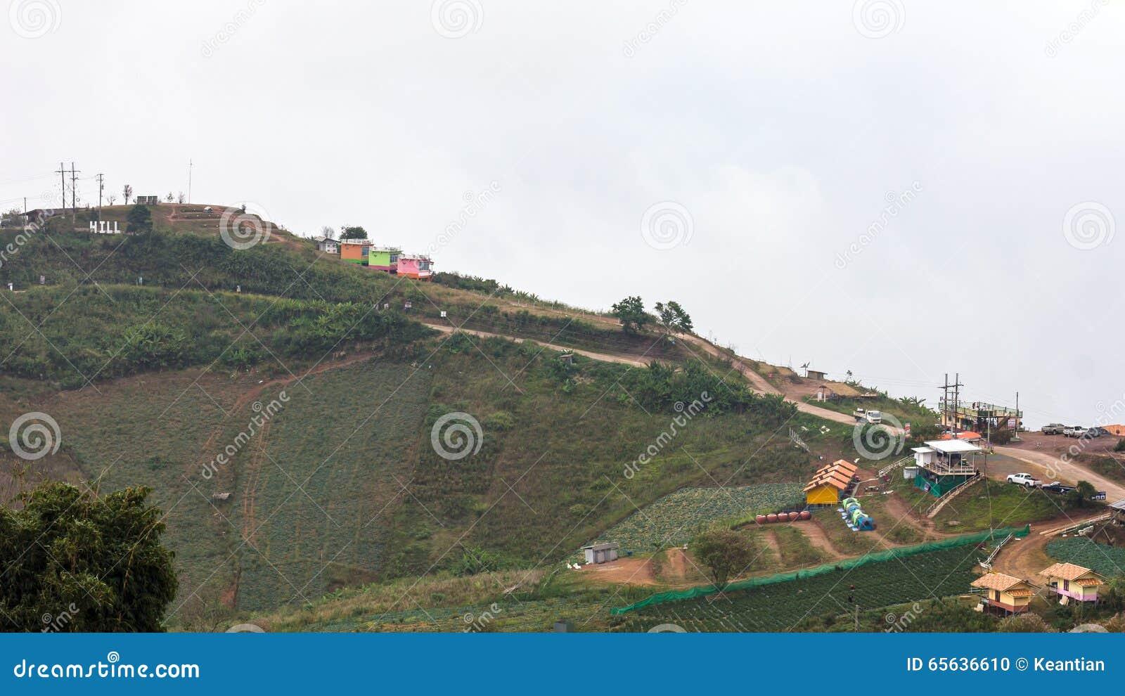 Paysage de ruine de plantation de station de vacances