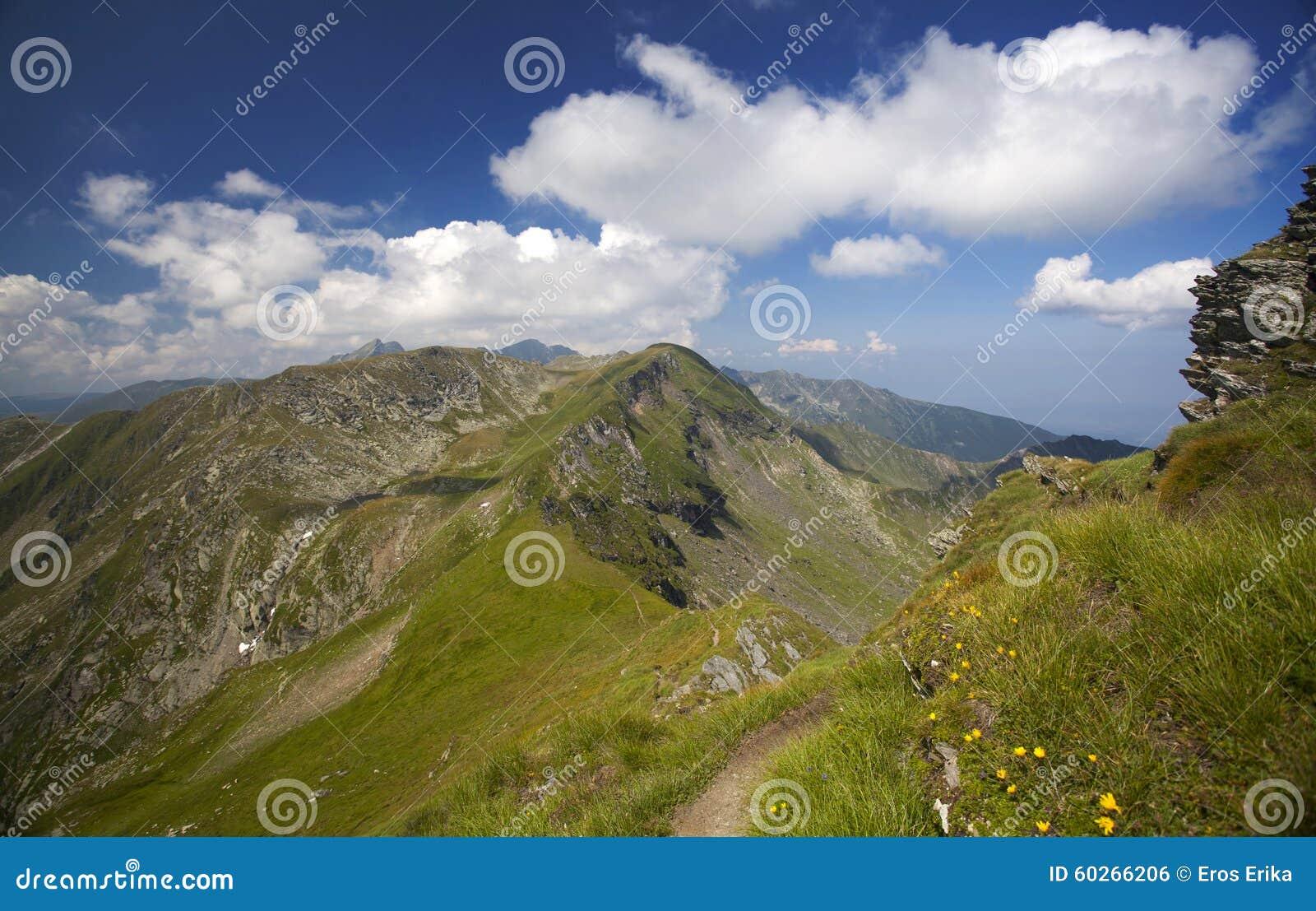 Paysage des montagnes de Fagaras en Roumanie