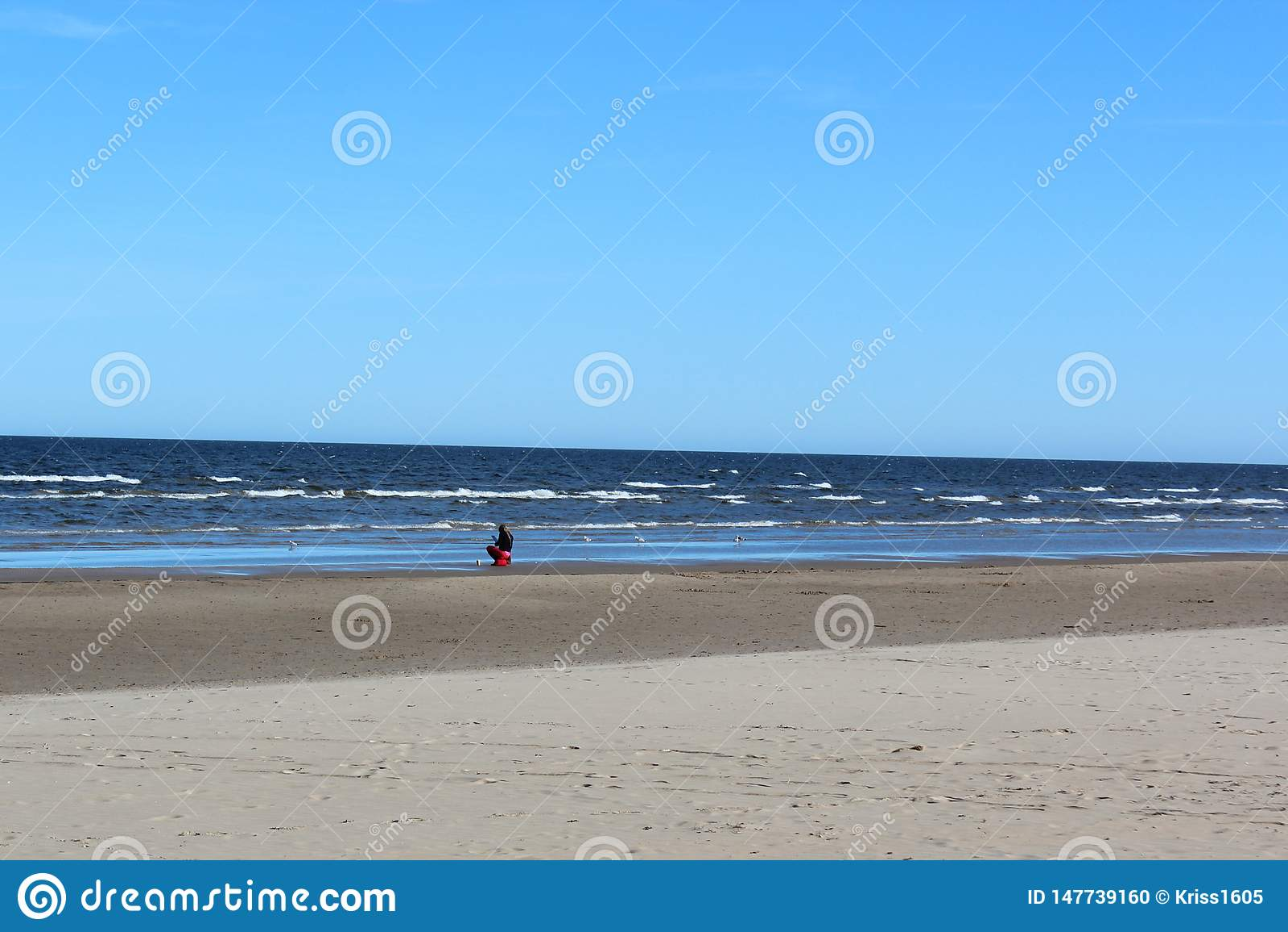 Paysage du bord de la mer baltique au printemps