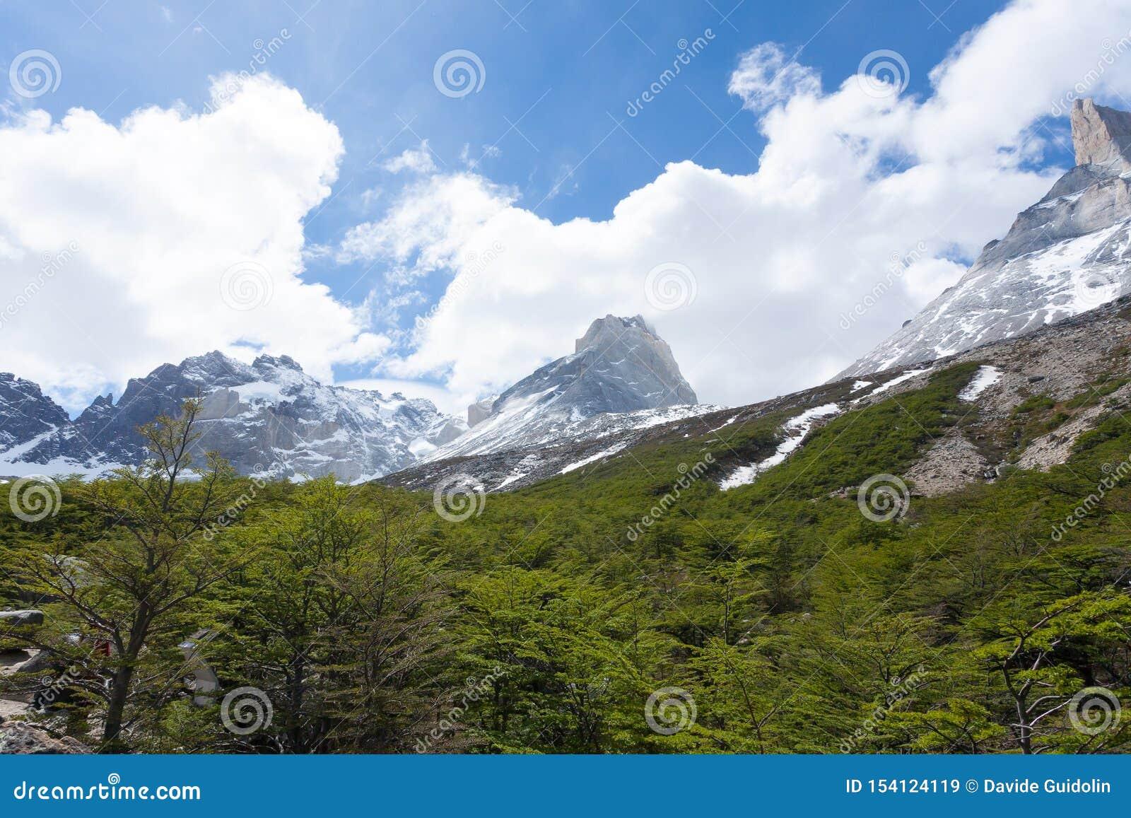 Paysage fran?ais de vall?e, Torres del Paine, Chili